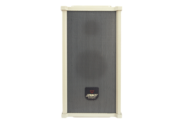 WS481 Wall mounted Speaker