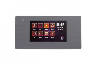 DM836S Intelligent Home Central Audio Host